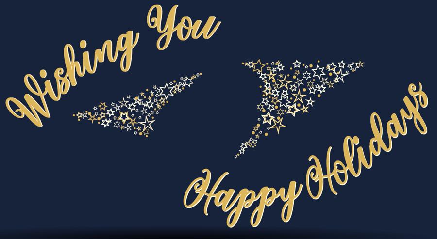 Happy Holidays from RAIN Group!