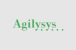 RAIN Group helps Agilysys Double Win Rate & Grow Sales
