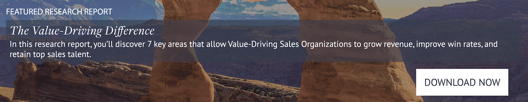 The Value-Driving Sales Organization