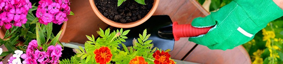 Lead Nurturing: 3 Things You Need to Know