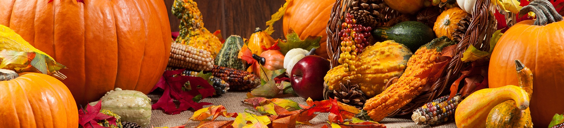 This Thanksgiving, Get in the Spirit of Building Client Relationships