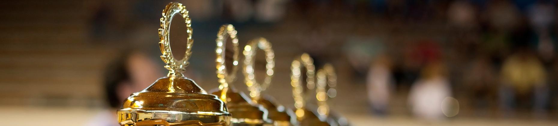 RAIN Group Brings Home 6 Top Sales Awards